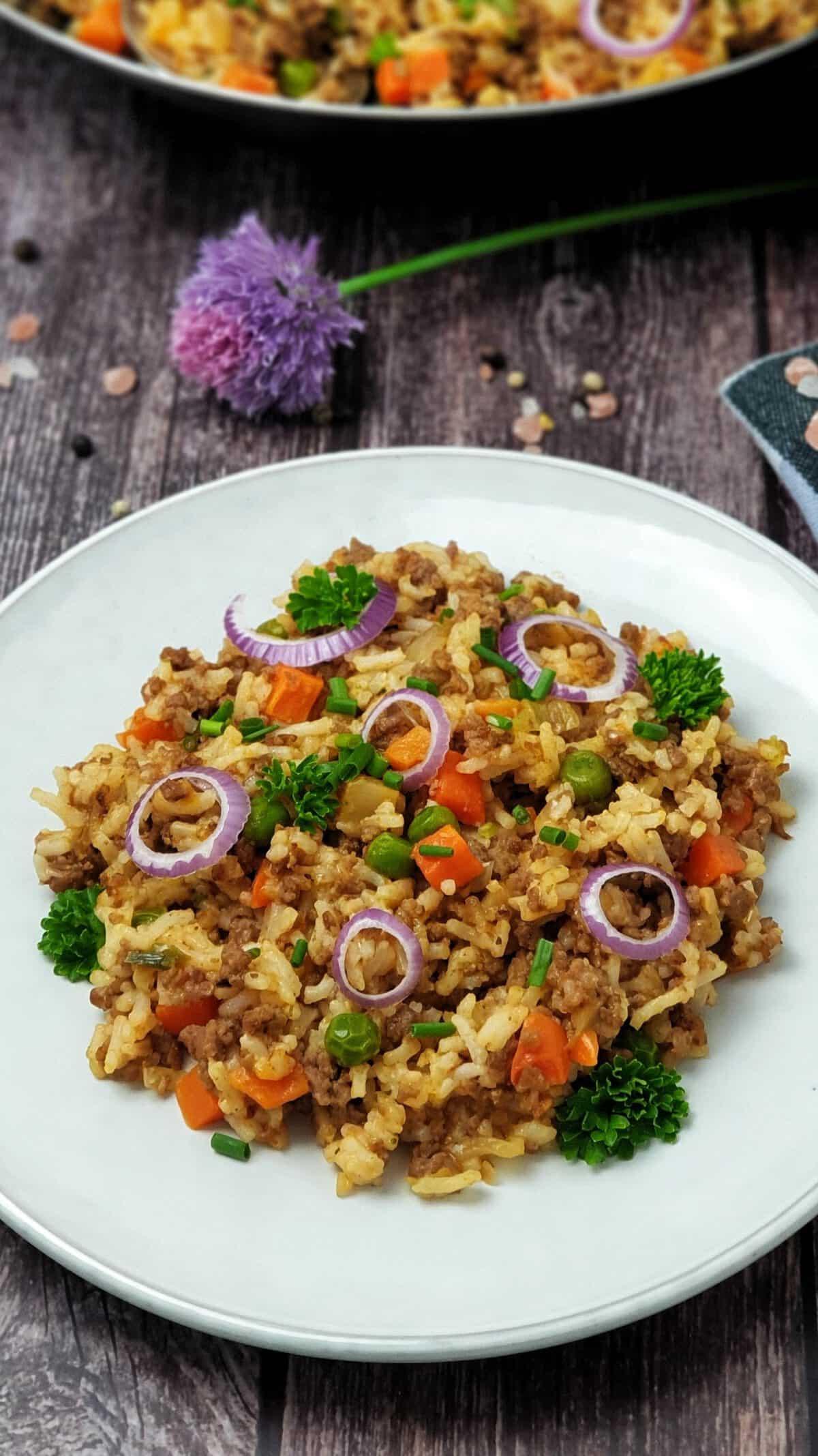 Auf einem weißen Teller angerichtet eine Reis-Hack-Pfanne mit roten Zwiebeln und Petersilie.