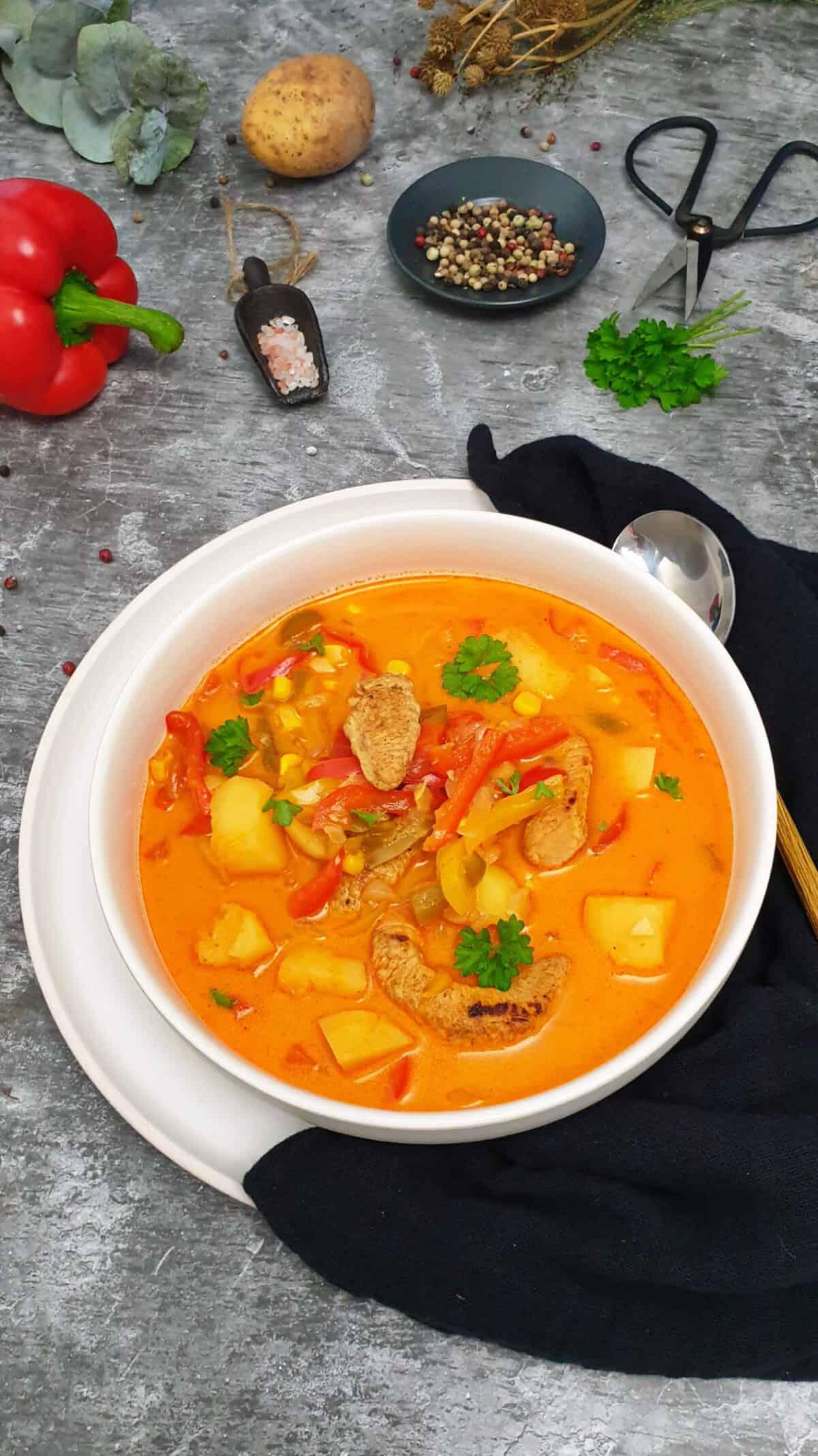 In einer weißen Schale angerichtet Gyros-Suppe mit Kartoffeln, Hähnchen und Paprika. Im Hintergrund Deko.